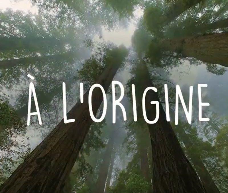 A L'ORIGINE …